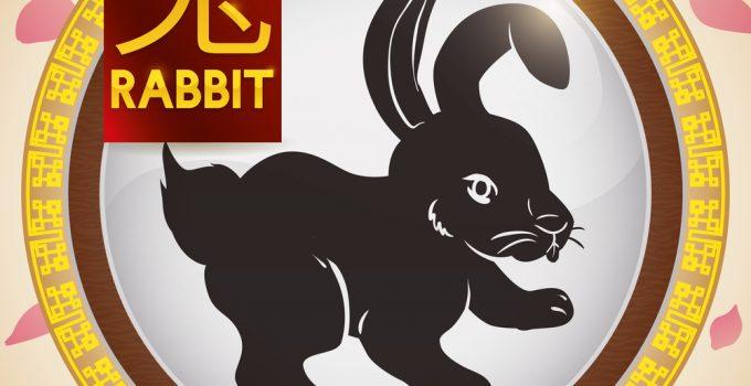 signo de coelho