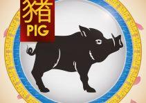signo de porco