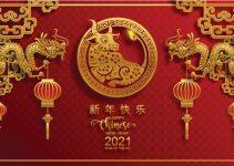 horóscopo chinês 2021 ano do boi