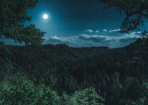 fases da lua em julho